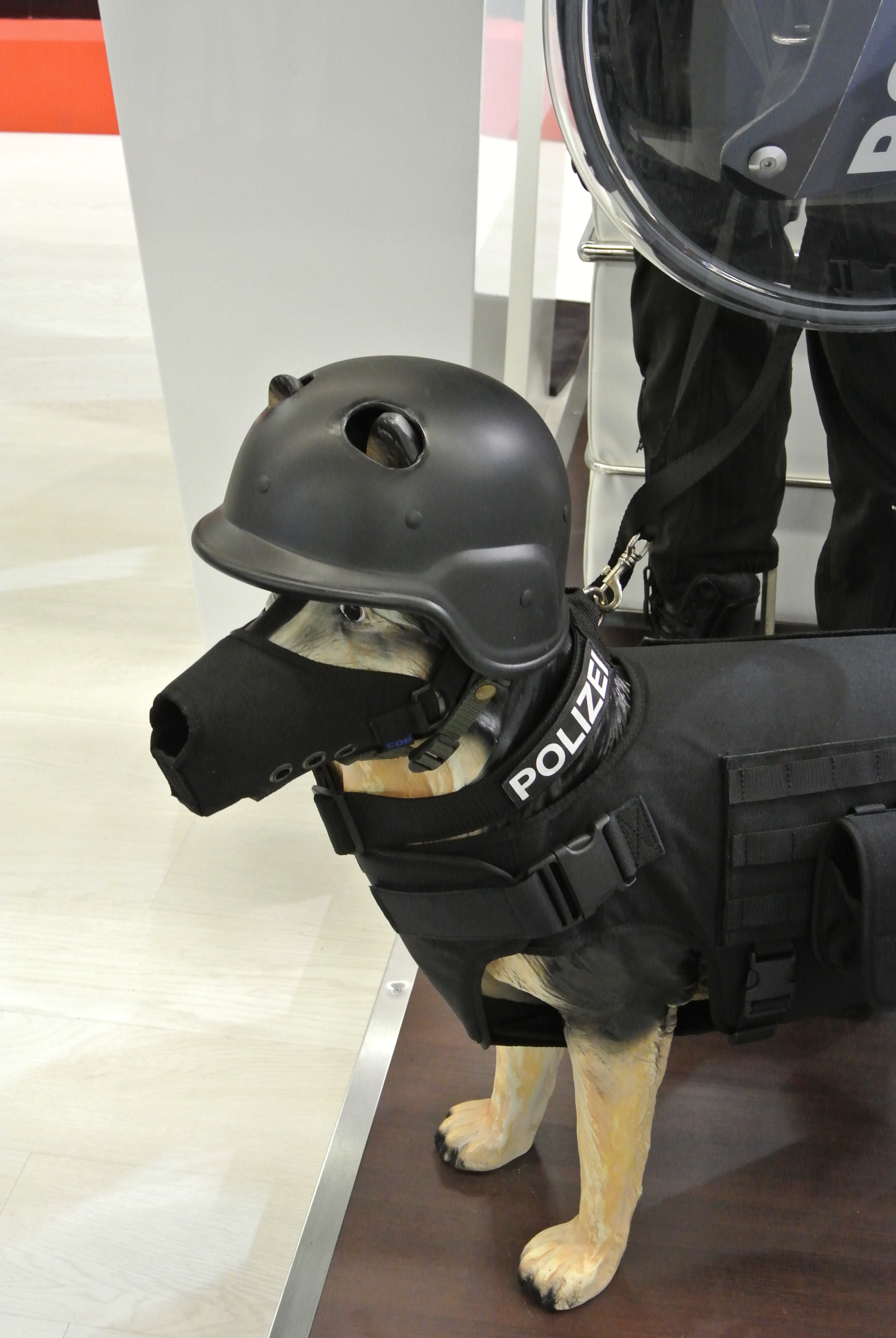 If you live in a rough neighbourhood you might consider this for your dog!