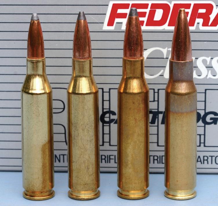 6 5mm Cartridges: an Overview (Part 1) | Target Shooter Magazine